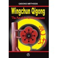 Wingchun Qigong The Art of the Qi Management (ebook - English edition)